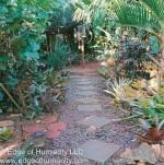 The Hermit's Garden –Tanka