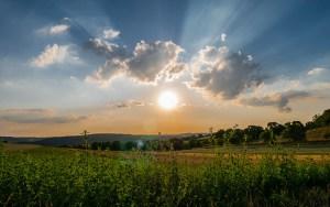 sun rise field